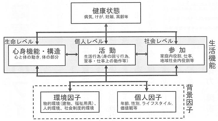 吉川先生②(図1)